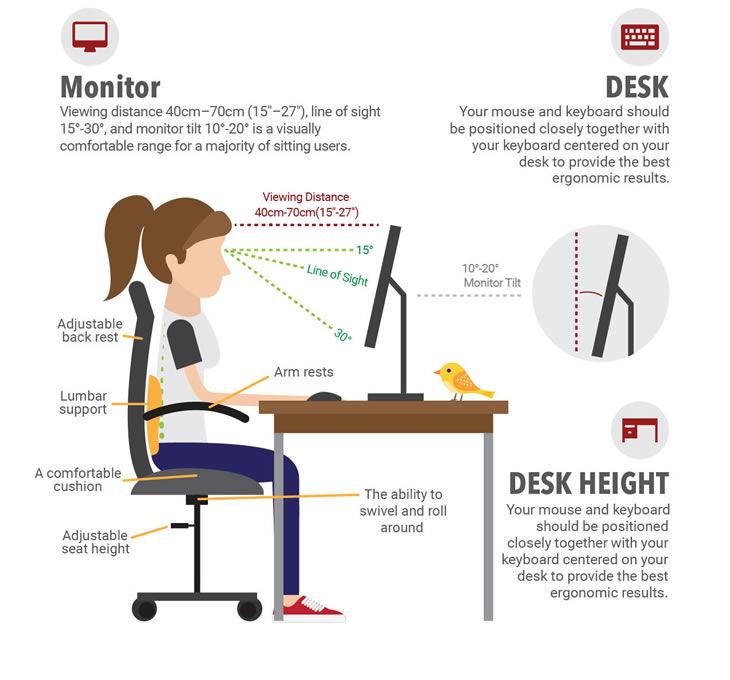 https://www.rhymebiz.com/sites/rhymebiz.com/assets/images/BlogImages/ergonomics_posture.jpg